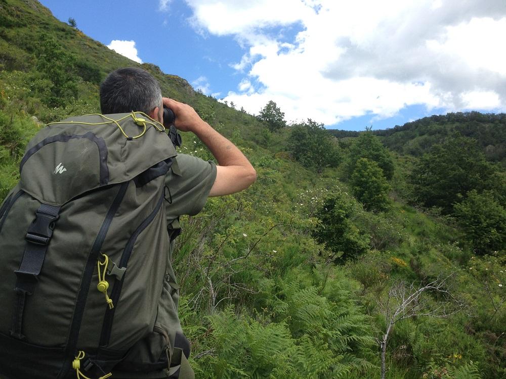appennino, estate 2020, lupo, trekking, yurta